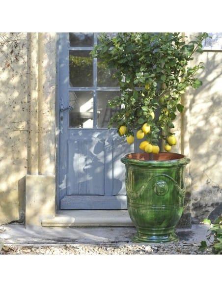 Vase d'Anduze émaillé tradition vert